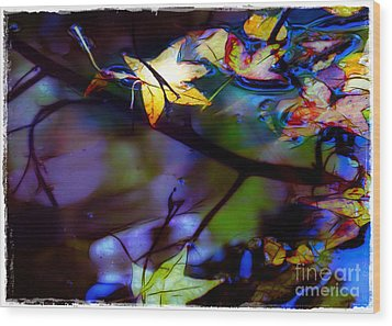Leaves And Reflections Wood Print by Judi Bagwell