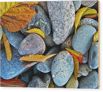 Wood Print featuring the photograph Leaves And Rocks by Bill Owen