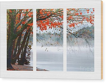 Leaves Of Red Wood Print by Darren Fisher