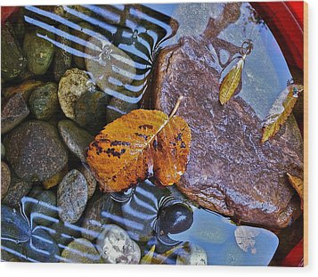 Wood Print featuring the photograph Leaves Rocks Shadows by Bill Owen