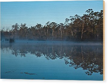 Lenthalls Dam 04 Wood Print by David Barringhaus