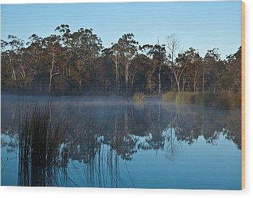 Lenthalls Dam 12 Wood Print by David Barringhaus