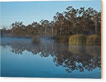 Lenthalls Dam 14 Wood Print by David Barringhaus