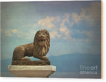 Leo On A Roof Wood Print by Susan Isakson