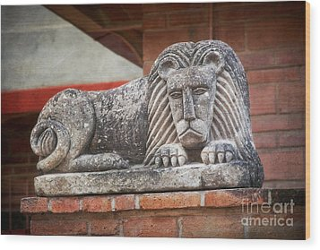 Leo On A Wall Wood Print by Susan Isakson