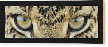 Leopard Eyes Wood Print by Sumit Mehndiratta
