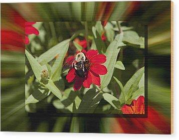 Let It Bee Wood Print by Charles Warren