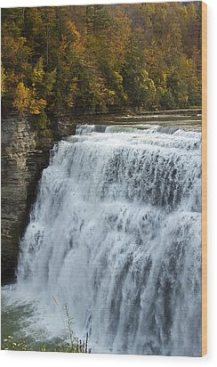 Wood Print featuring the photograph Letchworth Middle Falls by Darleen Stry