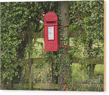 Letterbox In A Hedge Wood Print by Louise Heusinkveld