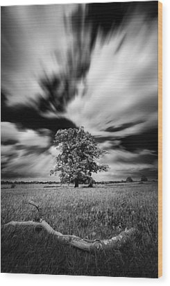 Wood Print featuring the photograph Life In A Stride by John Chivers