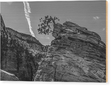 Life On The Edge Wood Print by George Buxbaum