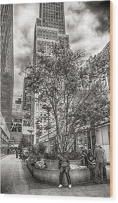 Wood Print featuring the photograph Life On The Street by Steve Zimic