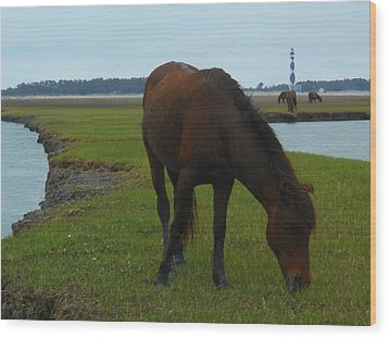 Life Without Fences Wood Print by Jeff Moose
