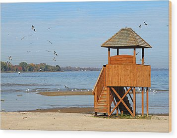 Wood Print featuring the photograph Lifeguard Lookout by Mark J Seefeldt