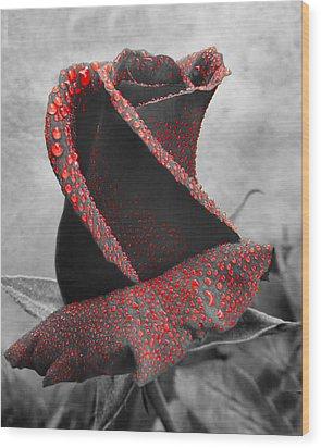 Life's Blood Wood Print by Debra Collins