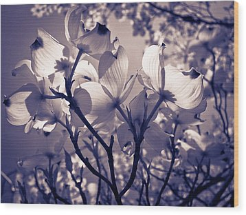 Light And Shadow Play Wood Print by Victoria Ashley
