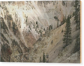 Wood Print featuring the photograph Light And Shadows In The Grand Canyon In Yellowstone by Living Color Photography Lorraine Lynch