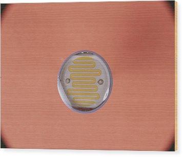 Light Dependent Resistor Wood Print by Andrew Lambert Photography