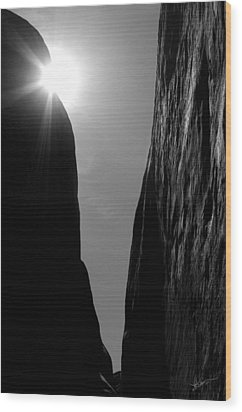 Wood Print featuring the photograph Light Of Day by Vicki Pelham