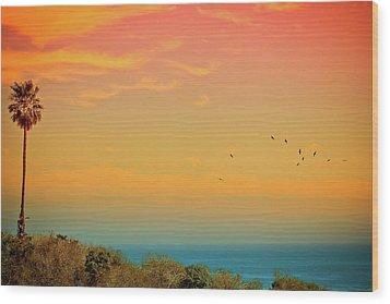 Light Of Sun Setting On  Malibu Beach Wood Print by Albert Valles