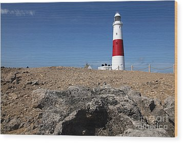 Wood Print featuring the photograph Lighthouse by Milena Boeva