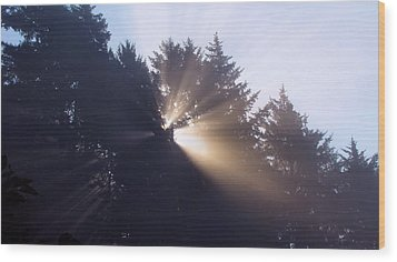 Wood Print featuring the photograph Lighting The Day by Katie Wing Vigil