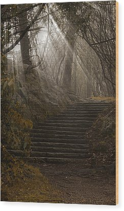 Lighting The Path Wood Print by Andrew Soundarajan