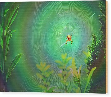 Lightning Spider Wood Print by Helmut Rottler