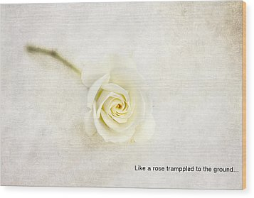 Like A Rose... Wood Print by Taschja Hattingh