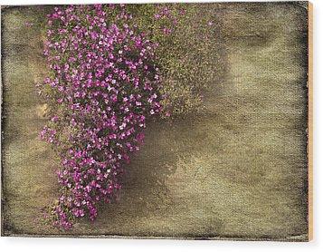 Lilac Branch Wood Print by Svetlana Sewell