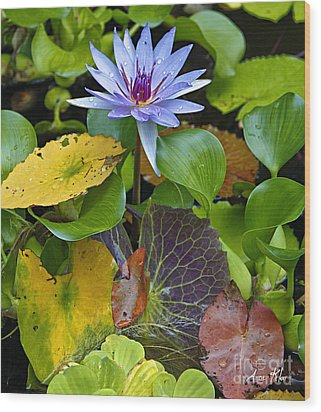Wood Print featuring the photograph Lilies No. 24 by Anne Klar