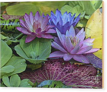 Wood Print featuring the photograph Lilies No. 27 by Anne Klar