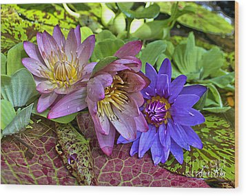 Wood Print featuring the photograph Lilies No. 29 by Anne Klar