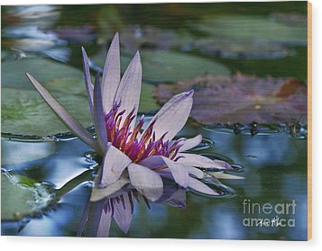 Wood Print featuring the photograph Lilies No. 40 by Anne Klar