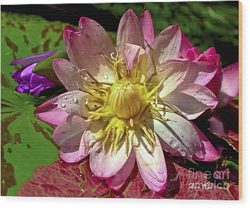 Wood Print featuring the photograph Lilies No. 42 by Anne Klar