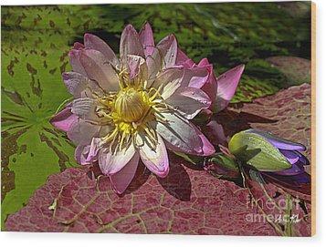 Lilies No.19 Wood Print by Anne Klar
