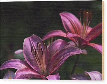 Wood Print featuring the photograph Lilies Of The Field by Wanda Brandon