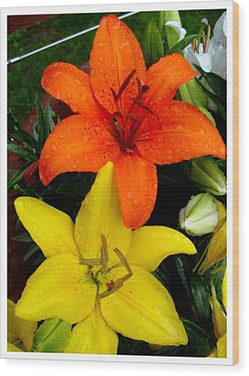 Lillies In Vermont Wood Print by Frank Wickham