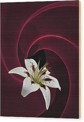Wood Print featuring the photograph Lilly White by Judy  Johnson