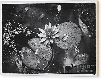 Wood Print featuring the photograph Lily At Camley Street I by Jack Torcello