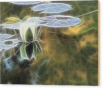 Lily Floating Wood Print by Odon Czintos