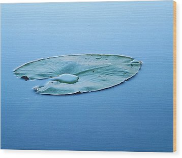 Wood Print featuring the photograph Lily Pad In The Sky by Gerald Strine