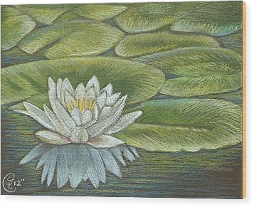 Lily Pads Wood Print by Stephanie L Carr