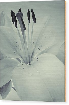 Lily Wood Print by Sarah Couzens