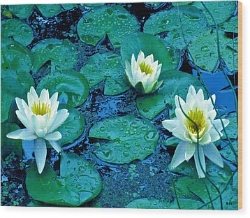 Lily Three Wood Print by Debra     Vatalaro