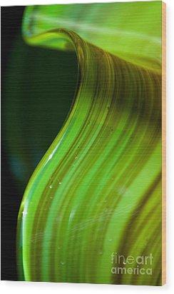Lime Curl Ll Wood Print by Dana Kern