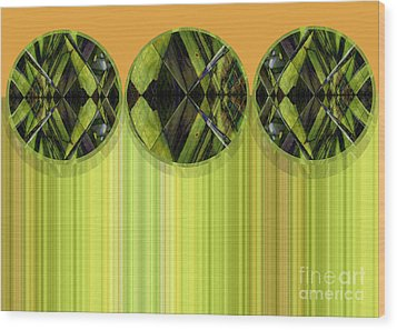 Lime Delight Wood Print by Ann Powell