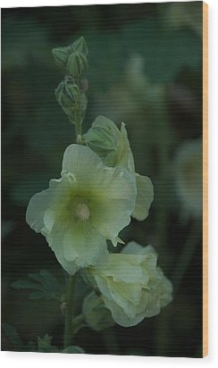Wood Print featuring the photograph Lime by Joseph Yarbrough