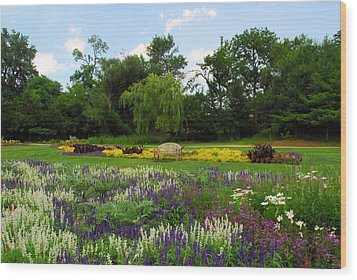 Lincoln Park Gardens Wood Print by Lynn Bauer
