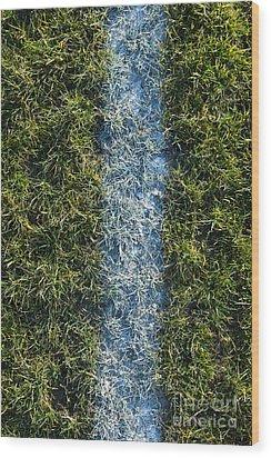 Line On Artificial Turf Wood Print by Paul Edmondson